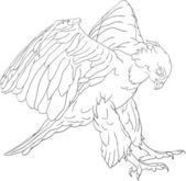Attacking hawk — Stock Vector