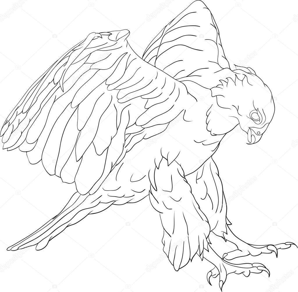 attacking hawk stock vector 169 pavelmidi 2742809