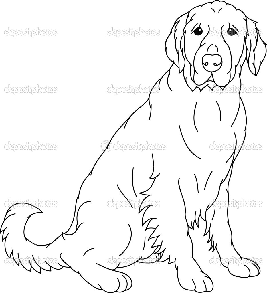 Black Lab Dog Coloring Pages Breeds Picture
