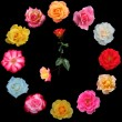 Clock face made of roses — Stock Photo