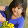 Stock Photo: Little girl with handful of sunflowers