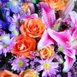 Bouquet of vibrant flowers — Stock Photo