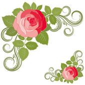 Rose and curls. — Stock Vector