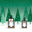 Snowy Penguins — Stock Photo