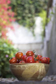 Bowl of Tomatoes — Stock Photo