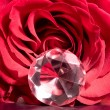 Rose bud with gem — Stock Photo