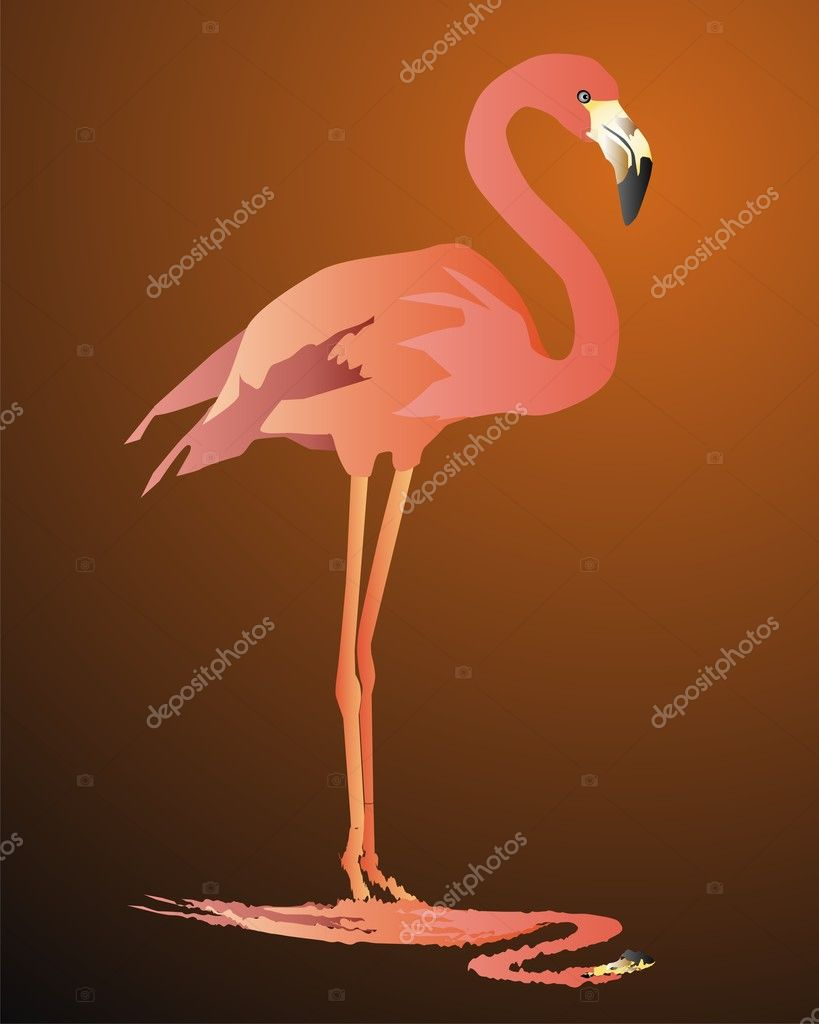 Pink flamingo against a dark background — Stock Vector #3197942