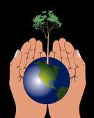 Hands holding globe — Stock Vector