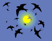 Flying swallows against the sky — Stock Vector