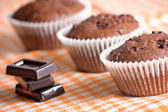 Muffin cake chocolate sweet dessert — Stock Photo
