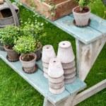 Romantic autumn garden setup — Stock Photo