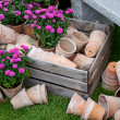 Stock Photo: Rustic Garden still life