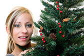 Portrait of a nice woman with christmas-tree — Stock Photo
