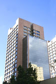 Building in Downtown Sao Paulo — Stock Photo