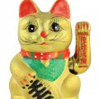 Lucky Cat — Stock Photo