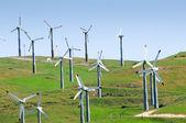 Wind mills — Stock Photo