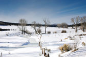 Snow covered meadow — Stockfoto