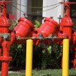 Industrial Fire Hydrant — Stock Photo