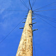 Stockfoto: Telegraph Pole