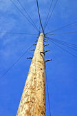 Telegraph pole — Stockfoto