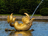 Golden Peterhof fountain dolphin — Stock Photo
