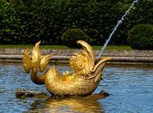 Golden Peterhof fountain dolphin — Stock Photo