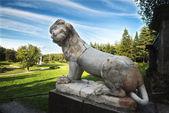 парк императорского лев — Стоковое фото