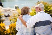 Lyckliga äldre par njuter av varandra — Stockfoto