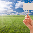 Blank Sign in Female Grasp in a Field — Stock Photo