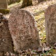 Tombstones on a jewish cemetery — Stock Photo