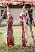 Pig halves hanging in a backyard — Stock Photo