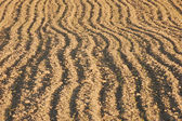 Newly ploughed agricultural field — Stock Photo