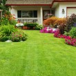 Manicured Yard — Stock Photo #3687189