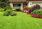 Manicured Yard — Foto Stock