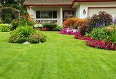 修剪的院子 — 图库照片