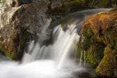 Flowing water from mountain — Stock Photo