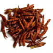 Stock Photo: Dried red chiili