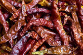 Dried red chilli background — Stock Photo