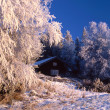 Wintry cottage — Stock Photo