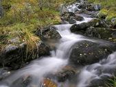 Arroyo de montaña hermosa — Foto de Stock