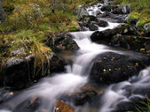 Flowing water of mountain stream — Stock Photo