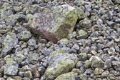 Nature weathered stones in mountain closeup — Stock Photo