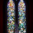 Biblical Stained Glass Detail — Photo