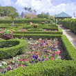 Tropical Formal Gardens — Stock Photo
