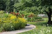Perenial Garden — Stock Photo