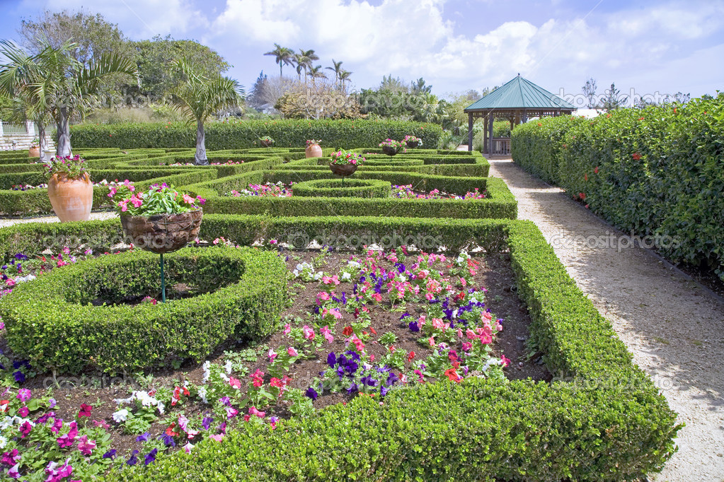 Large clay planters and clipped boxwood hedges are part of the formal gardens in the Bermuda Botanical Gardens.  Petunias fill in the spaces amongst the hedges. — Photo #2991255