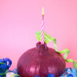Stock Photo: Onion Birthday