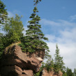 Hopewell Rocks, New Brunswick — Stock Photo