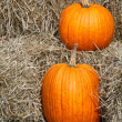 Autumn Pumpkins — Stock Photo #3801398
