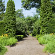 Stock Photo: Formal Garden Path